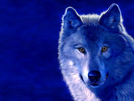Blue Wolf Desktop Nexus Wallpapers Animals Wolf Background Wolf Spirit