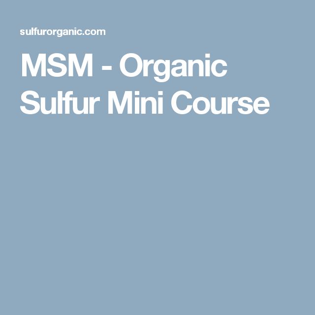 MSM - Organic Sulfur Mini Course | Health | Health, Healthy recipes