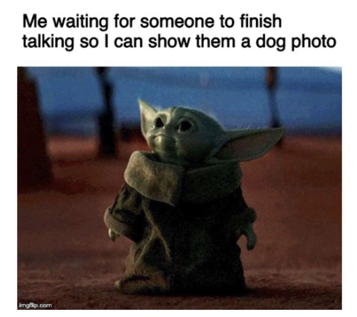 Pin By Ravenbloom On Baby Yoda In 2020 Yoda Meme Funny Memes Memes