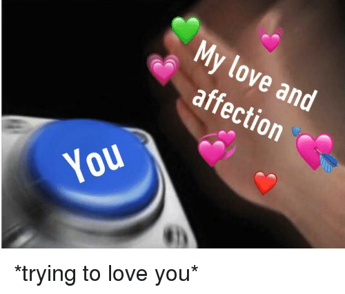Love And Affection Meme Pictures Affection Cute Love Memes Love Memes