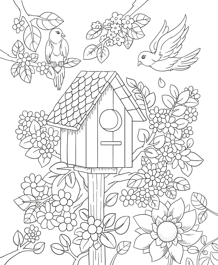 Coloring Page Birdhouse