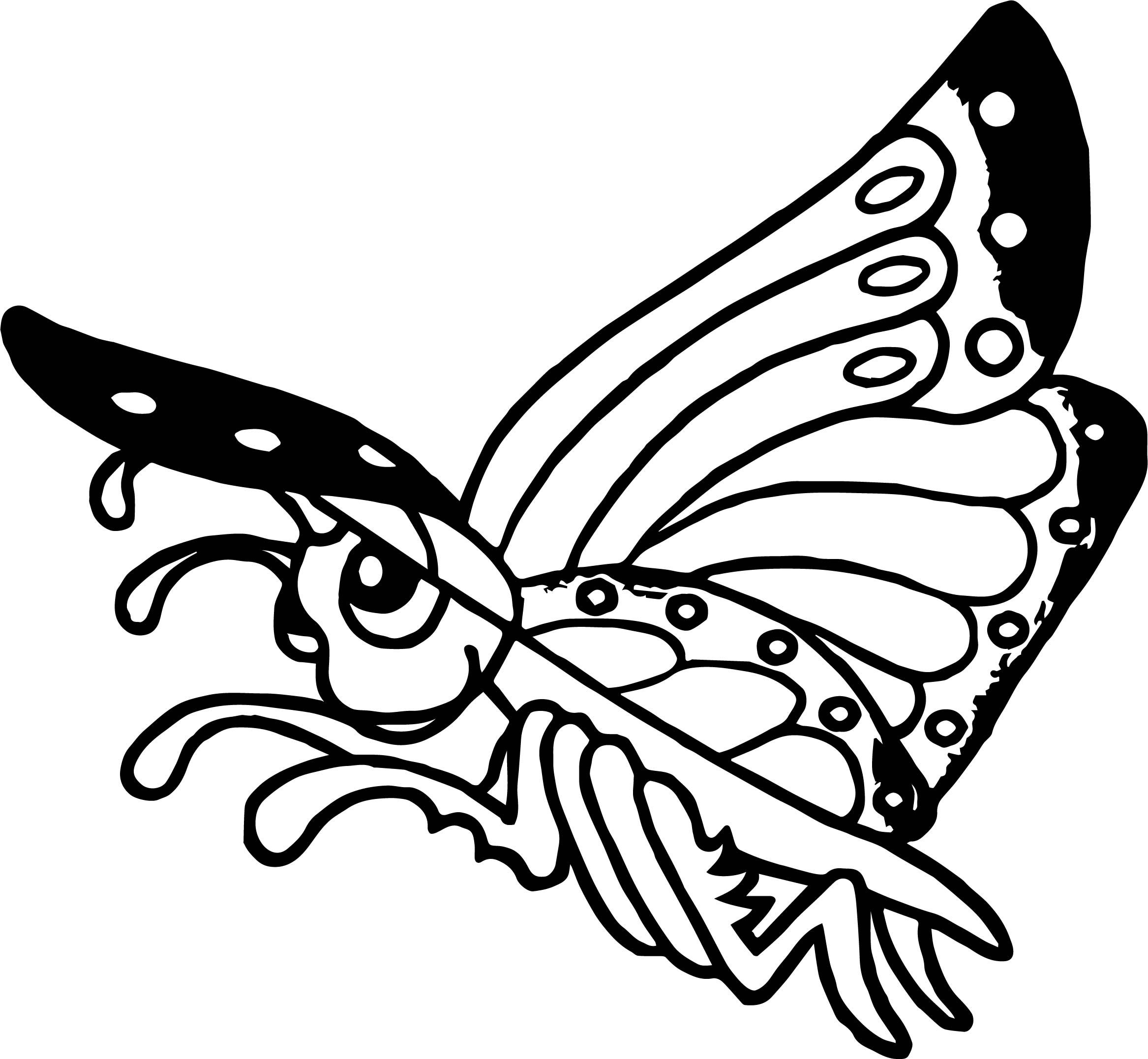 Cool Rainforest Butterfly Coloring Page Butterfly Coloring Page Rainforest Butterfly Coloring Pages [ 2154 x 2334 Pixel ]