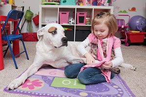 MD: Support SB 296 to Stop Insurance Companies from Discriminating Against Dog Owners