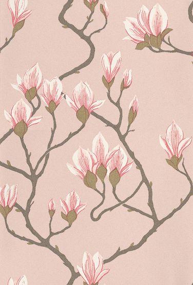 72 3009 magnolia
