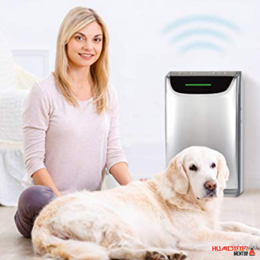 Planning to get an air purifier and humidifier combo for