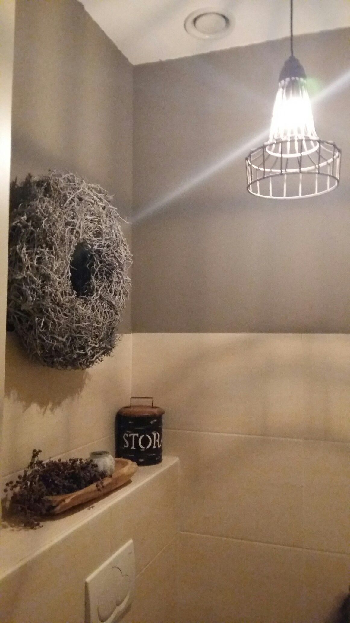 toilet sober geverfd met gamma wood en wall graceful grey. draadlamp ...