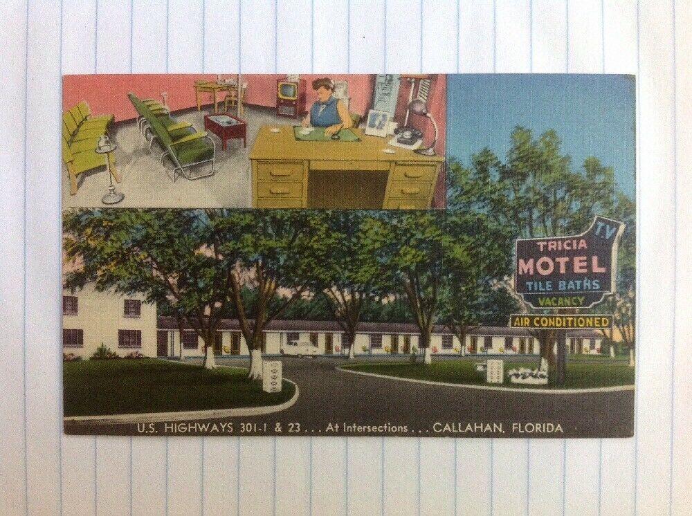 Postcard Callahan Florida Tricia Motel 1950s Linen Postcard Vintage Postcards Callahan