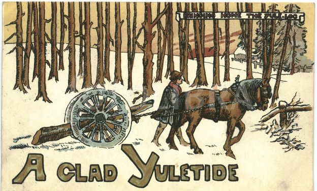 §§§ : Bringing Home the Yule Log : 1904