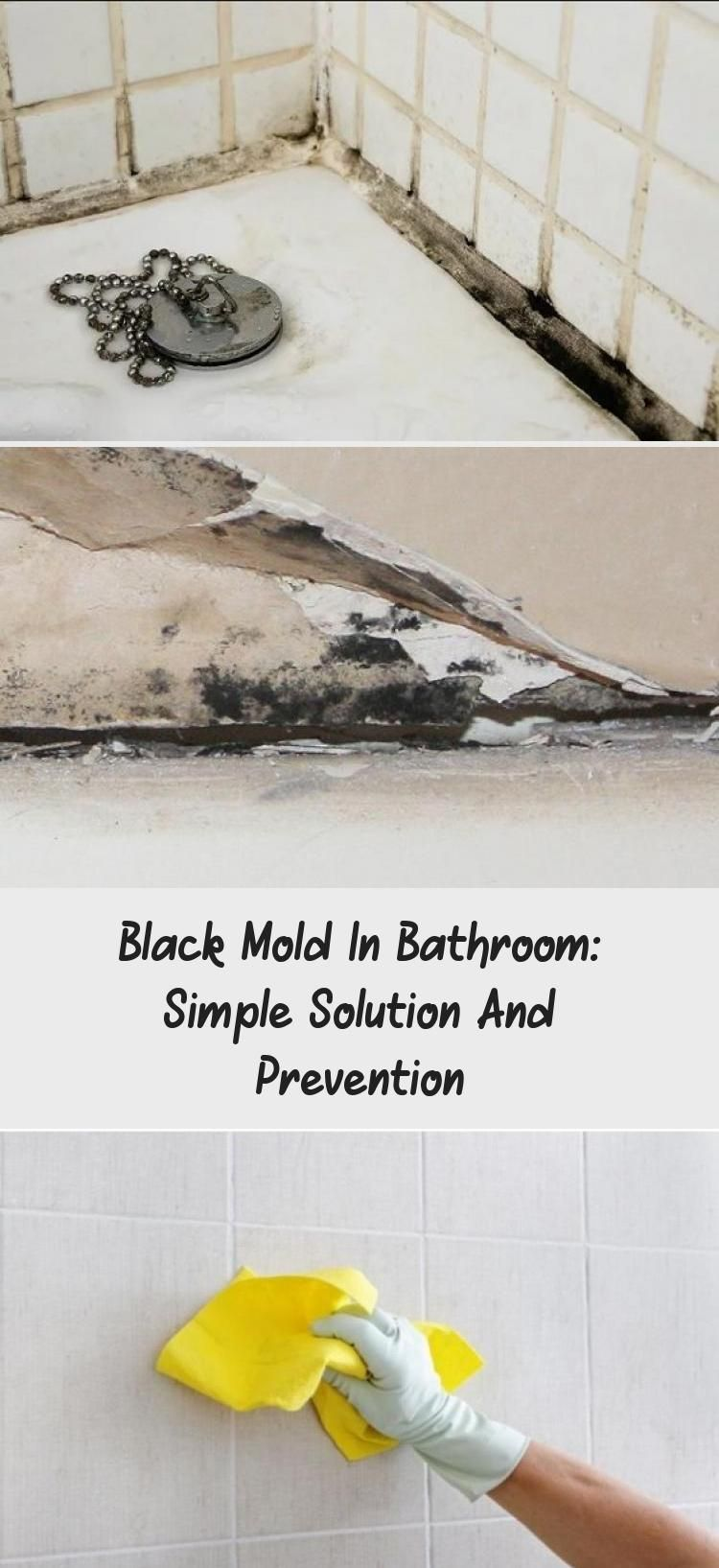 Black Mold In Bathroom Simple Solution And Prevention