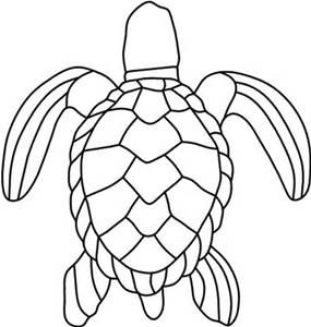 Turtle Shell Designs Bing Images Stained Glass Patterns
