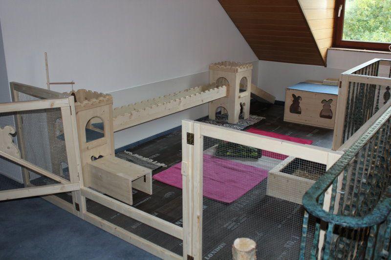 gehegebilder kaninchen raum pinterest kaninchen kaninchenstall und tierheim. Black Bedroom Furniture Sets. Home Design Ideas