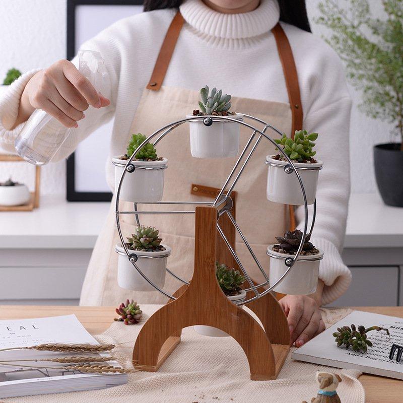 Fancy Flower Pot Succulent Plants Pot House Plants Decor Plant Decor Flower Pot Holder