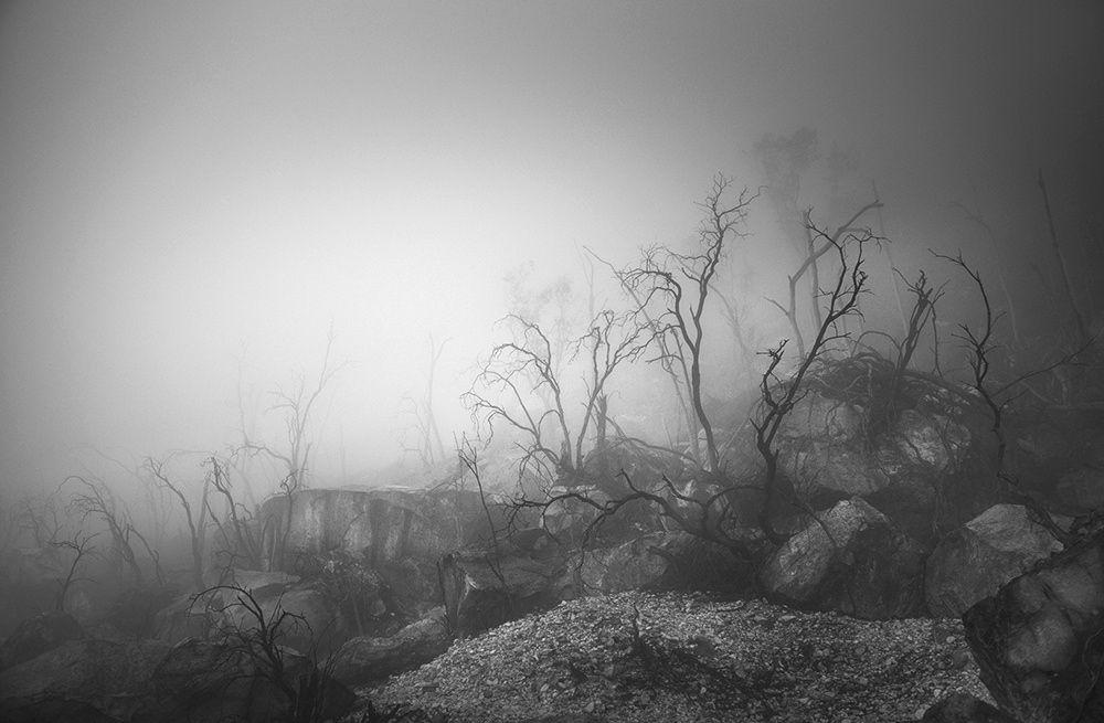 Photograph Kawah Putih by Hengki Koentjoro on 500px