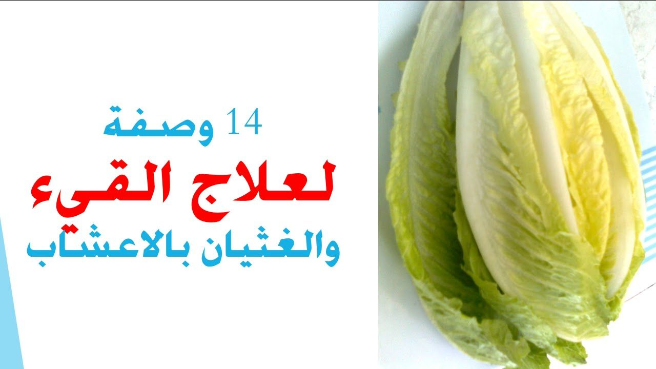 علاج القيء والغثيان بالاعشاب Cabbage Food Vegetables