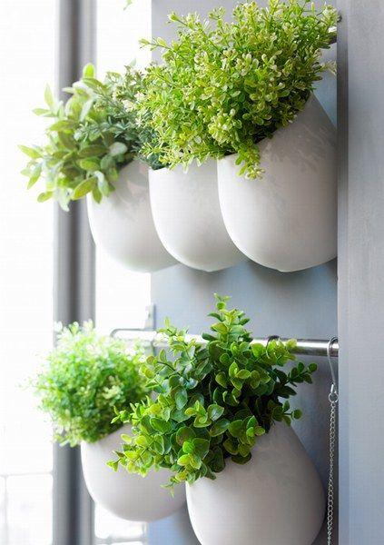 oda a las plantas! macetas de diseño para el hogar | kitchens