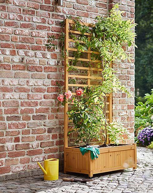 gartenm bel meine oase im gr nen bei tchibo vertikal garten pinterest oase. Black Bedroom Furniture Sets. Home Design Ideas