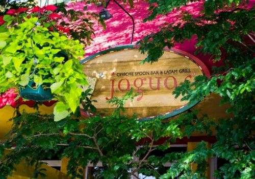 Jaguar Restaurant In Coconut Grove. Delightful Dishes With The Freshest  Ingredients, Beautifully Presented In A Comfortable Setting.