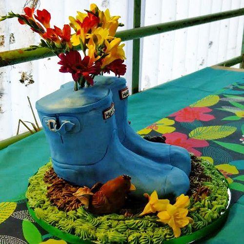 Wellington Boot Cake