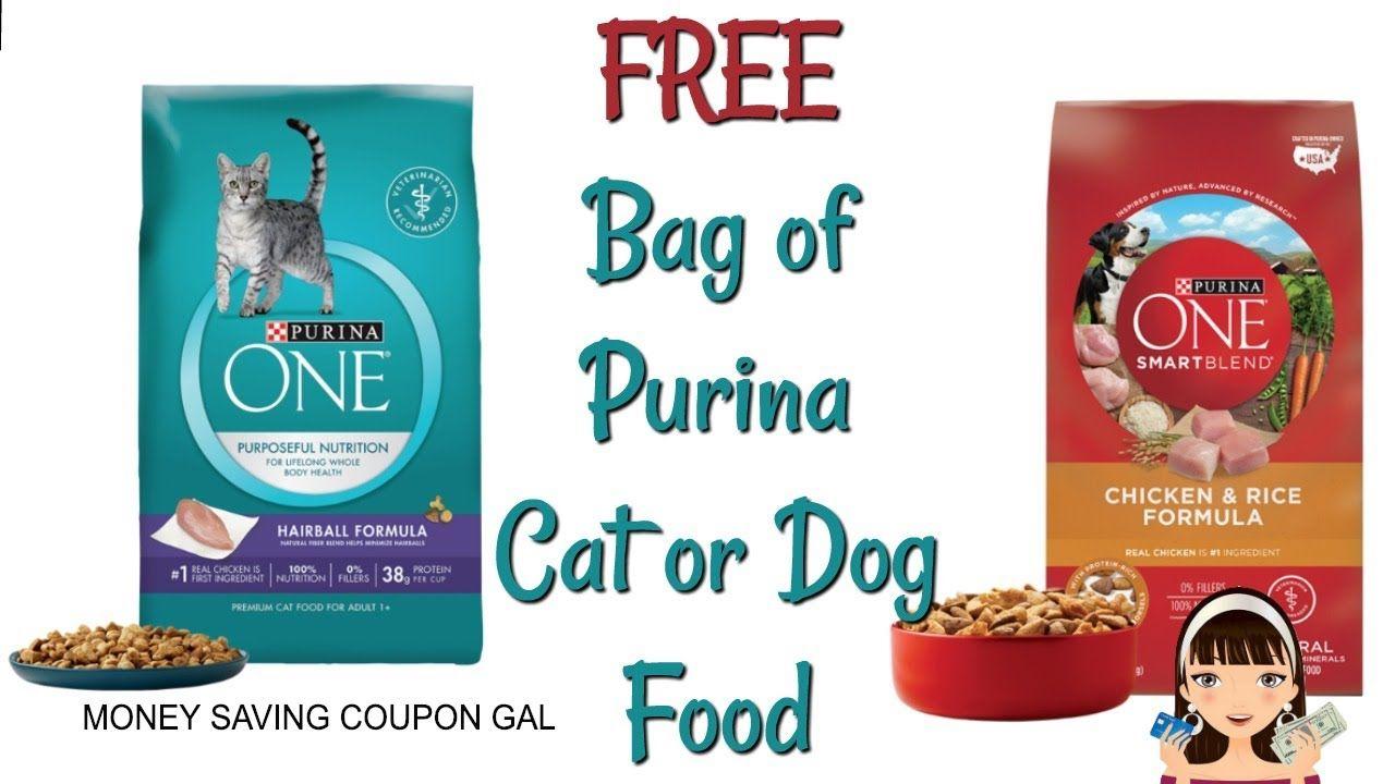 Free Bag Of Purina Cat Or Dog Food Dog Food Recipes Purina
