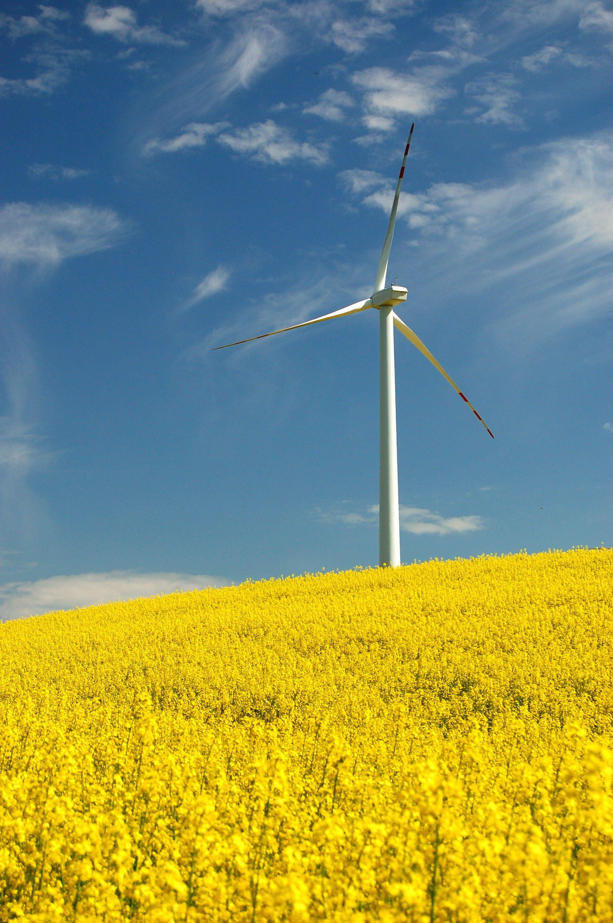 Renewable energy or wind energy technology