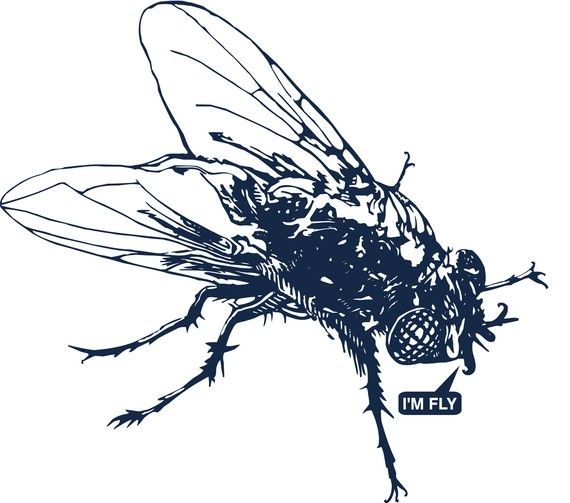 Fly T Shirt By The5050company On Etsy 25 00 Fly Drawing Insect Tattoo Dark Tattoo