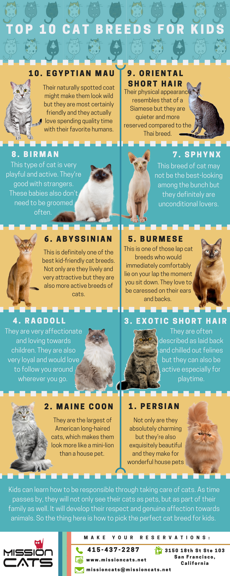 Pin By Mission Cats On Cats Care Cat Sitting Cat Boarding Cat Hotel Infographics Cat Breeds Cats Egyptian Mau