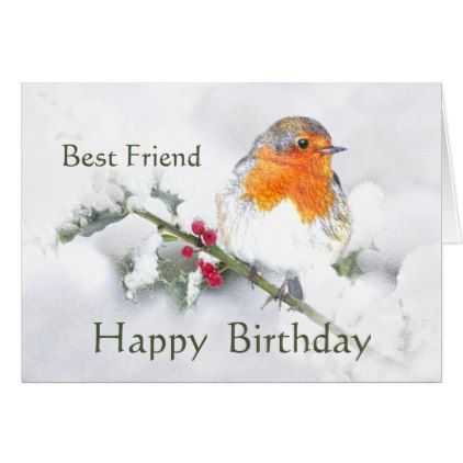 Friend Birthday English Robin Pretty Garden Bird