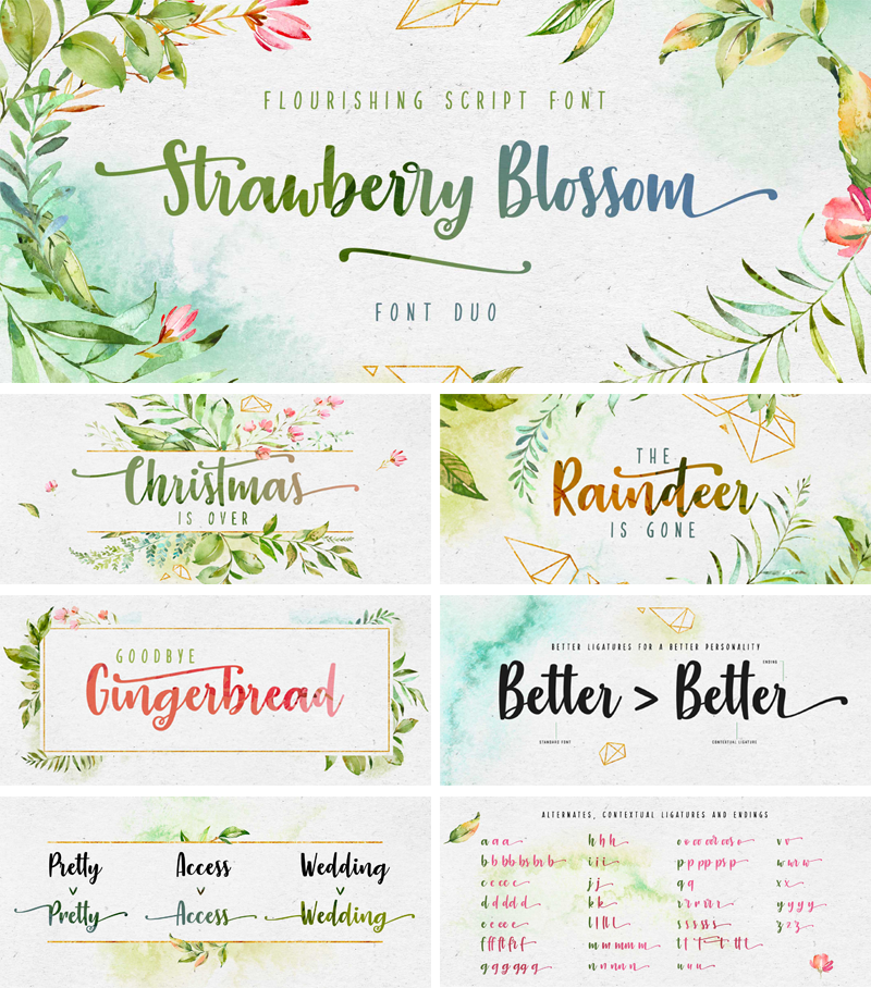 Strawberry Blossom Font | dafont com | Fonts  | Free fonts download