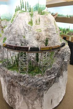 Model Train Layout!