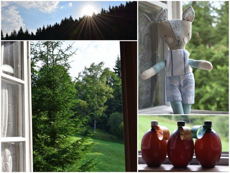 Ty ranní výhledy na dovolené ... východ slunce, čerstvá zelená barva a bonusy navíc ... Krkonoše