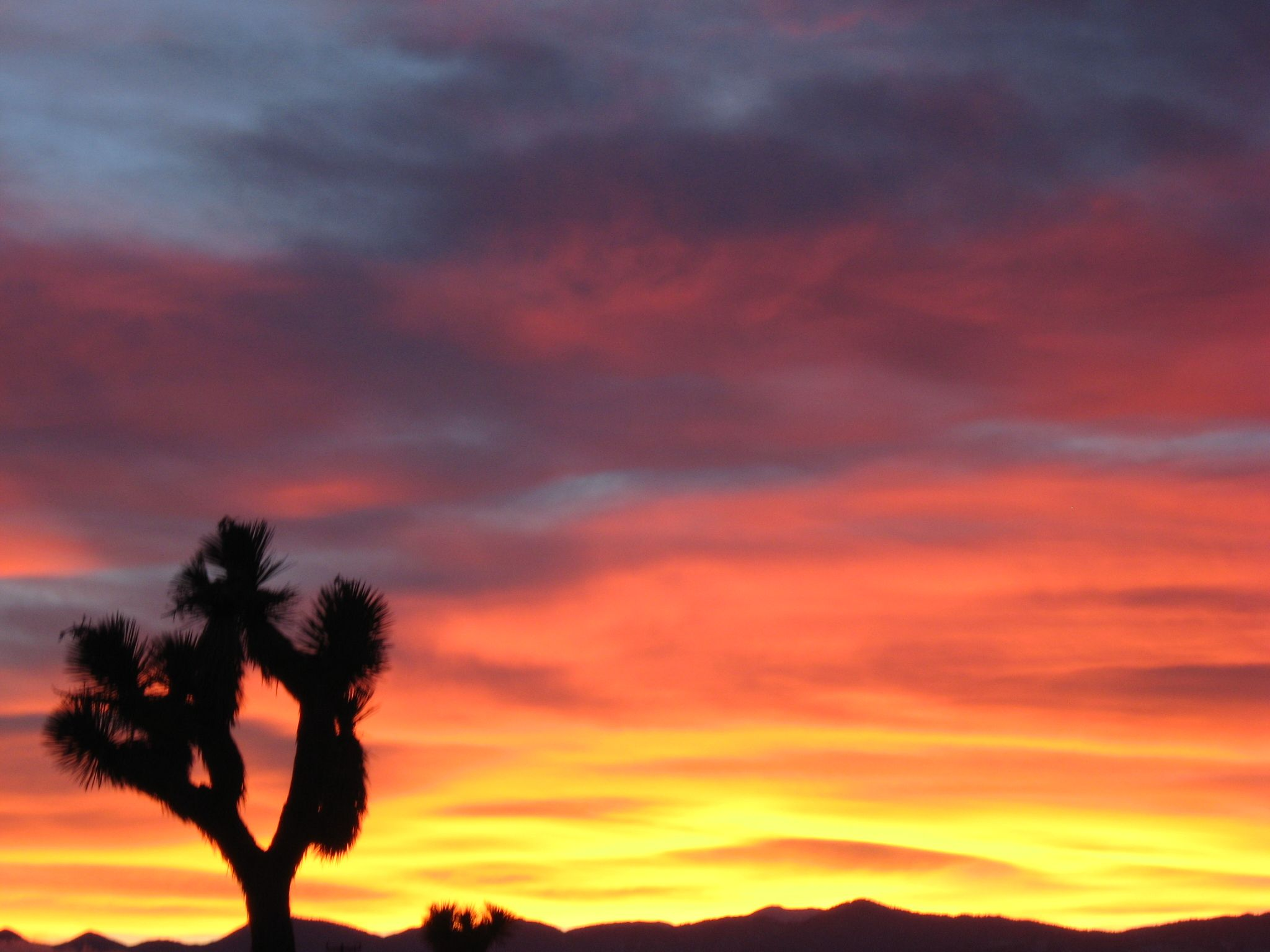 Never Thought I D Say It But I Kinda Miss The Desert Favorite Places Outdoor Sunset