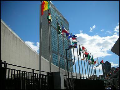 La ONU se nuestra de acuerdo con la despenalización del consumo de drogas | NOTICIAS AL TIEMPO