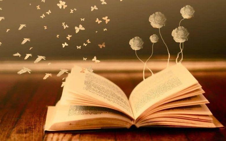 موضوع تعبير عن القراءة Books Book Haul Author