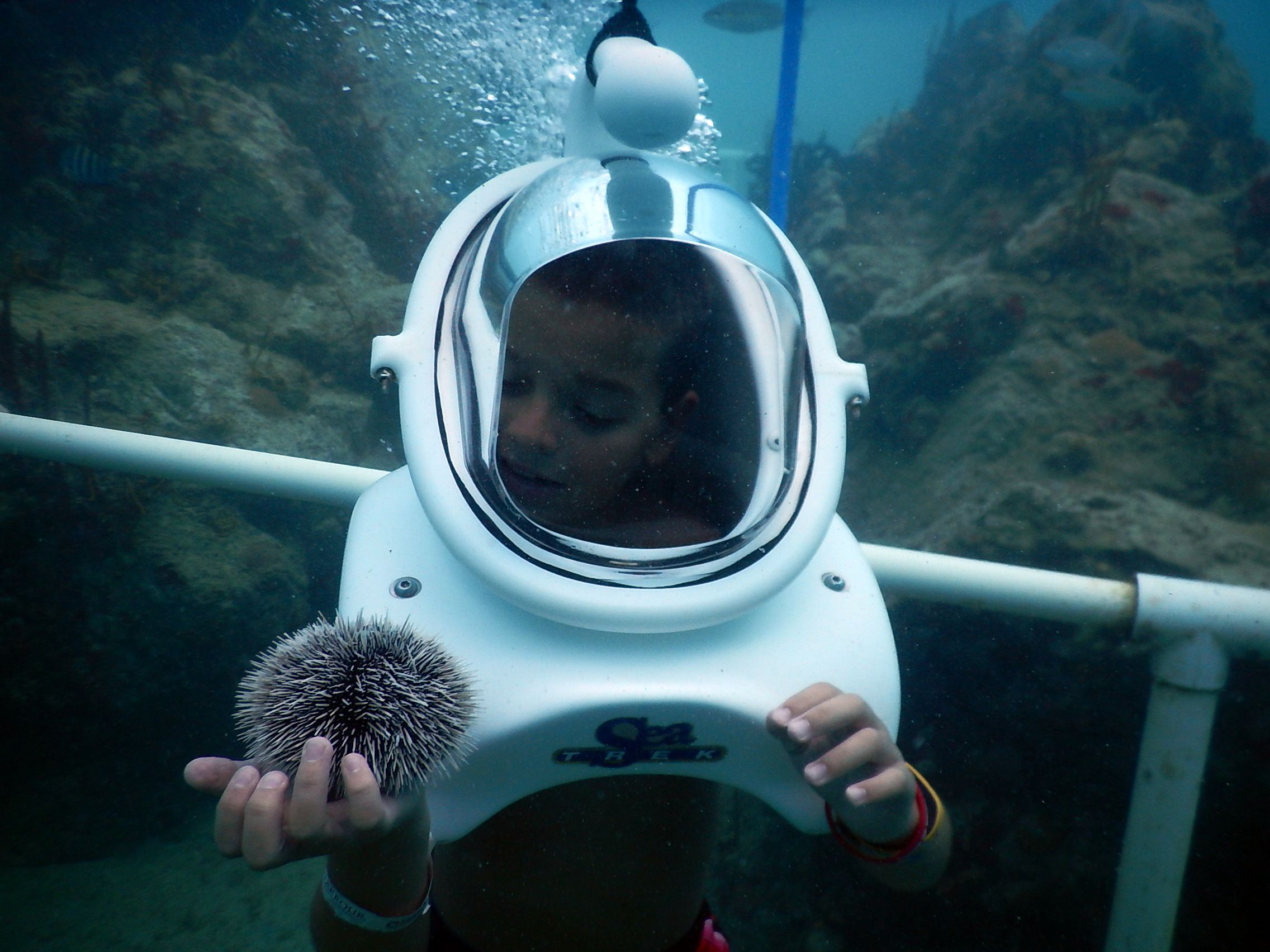 Helmet Diving in St. Maarten - when your kids love fish, but are a little too little for scuba diving!