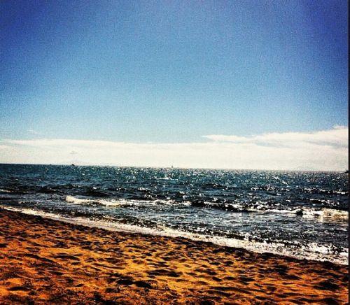 Castiglione della Pescaia #beaches #sea #landscape #swim