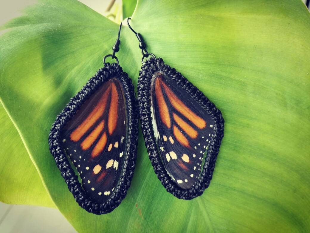 b9d224b51 Real Butterfly Wings Earrings, Natural Butterfly Earrings, Natural Wings  Earrings, Boho Earrings Creative Design Unique Gift Original Design