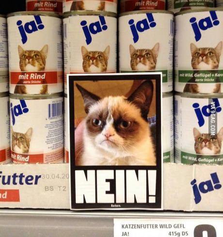 German catfood