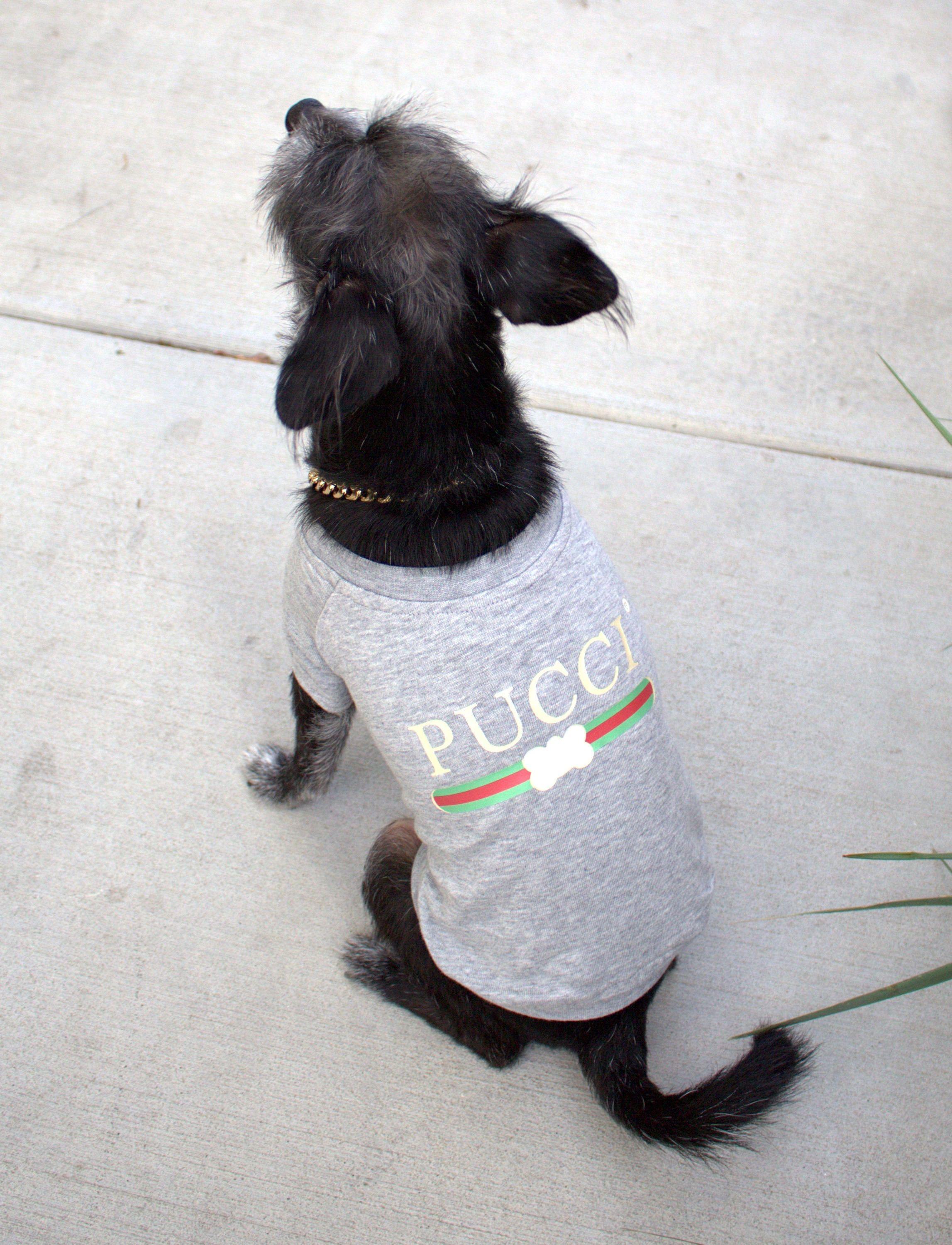 2e4e7344b74 Designer Dog Shirt PUCCI Dog Tee Dog Tshirt Pet Clothing