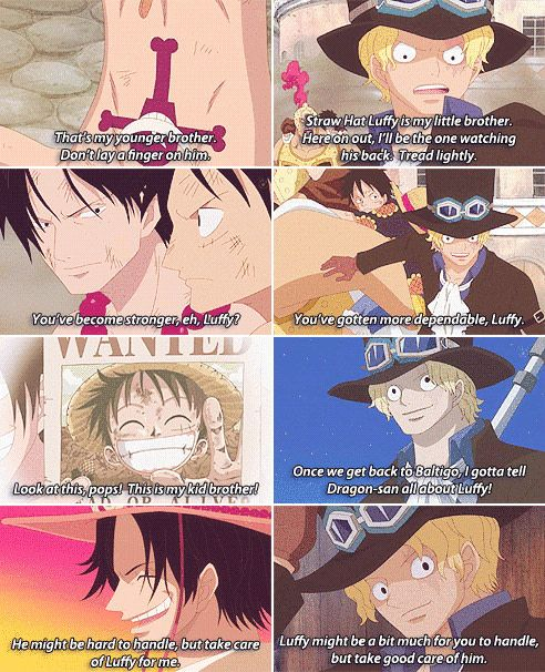 One piece brothers