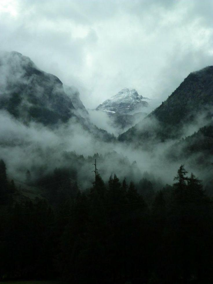Foggy Forest Paysage Brumeux Photo Noir Et Blanc Paysage Paysage Dans La Brume