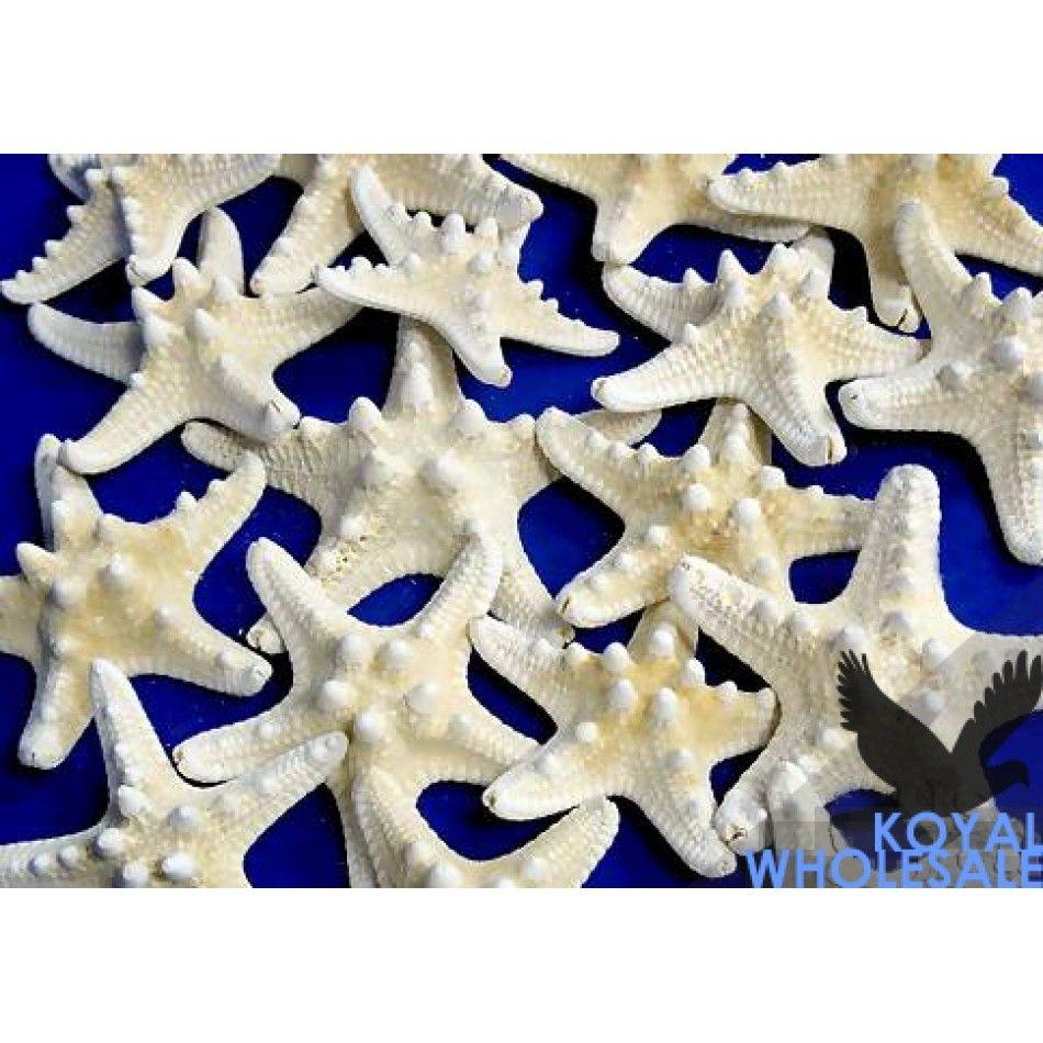 Armored Starfish 3\