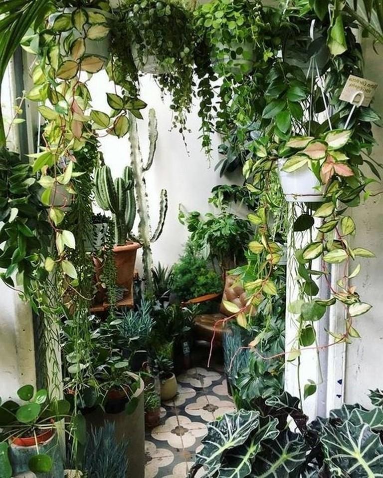 40 Fabulous Indoor Garden Ideas To Freshen Your Home Indoorgarden Gardendesign Gardenideas Room With Plants Plants Indoor Plants