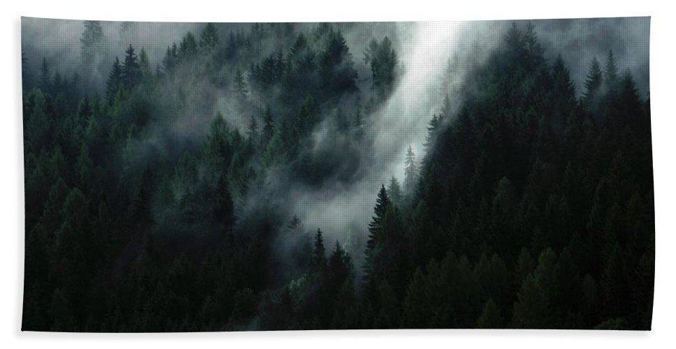 Dark Deep Dense Epic Evergreen Fog Forest Green Landscape