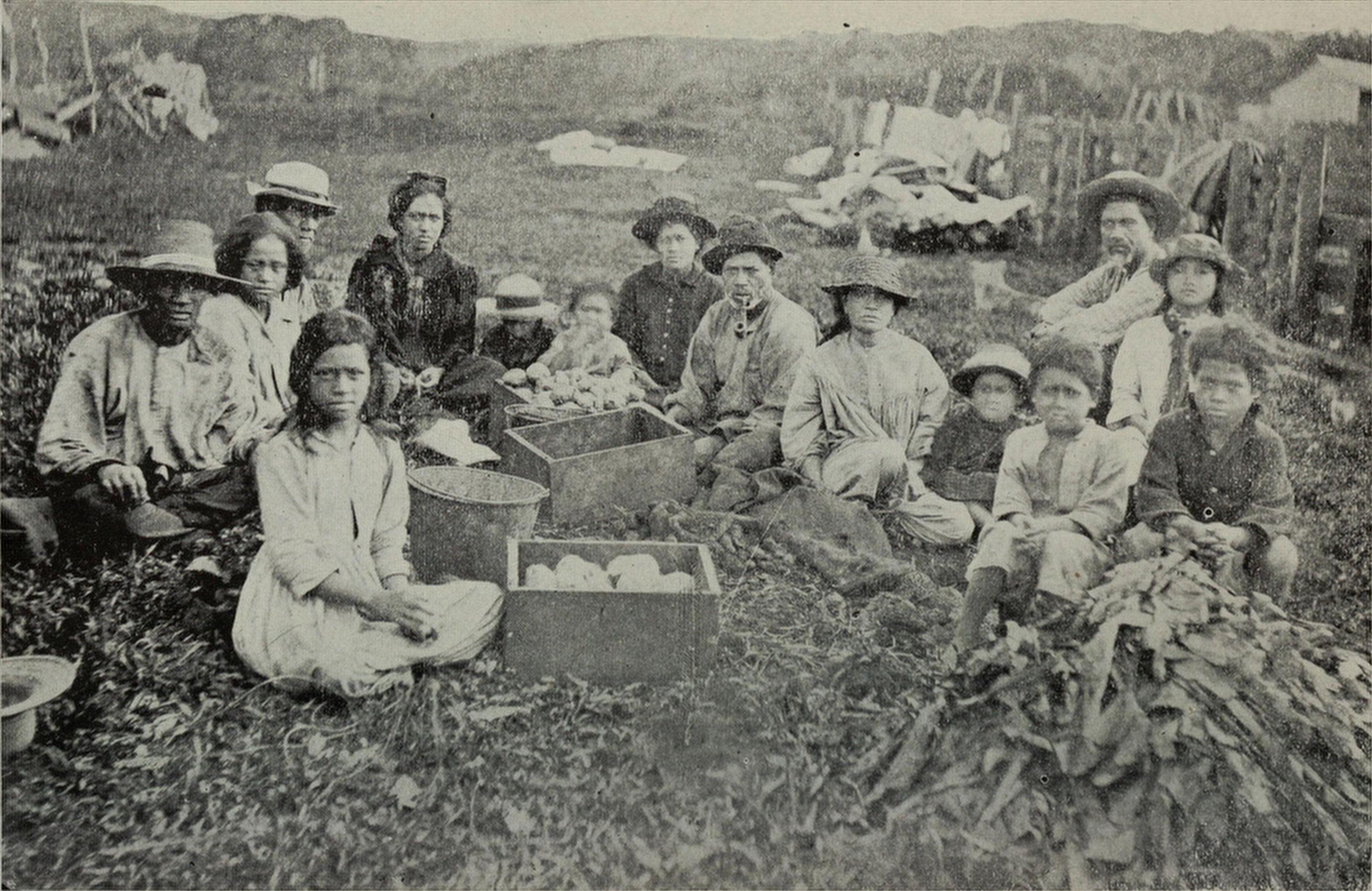 A Group Of Hawaiians