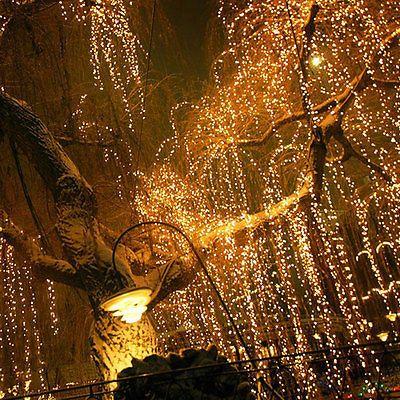 100m LED Lichterkette Beleuchtung Weihnachten Leuchte Vorhang Lichternetz  Garten