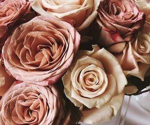 Rose Gold Flowers Antique Roses Rose Rose Gold Flower