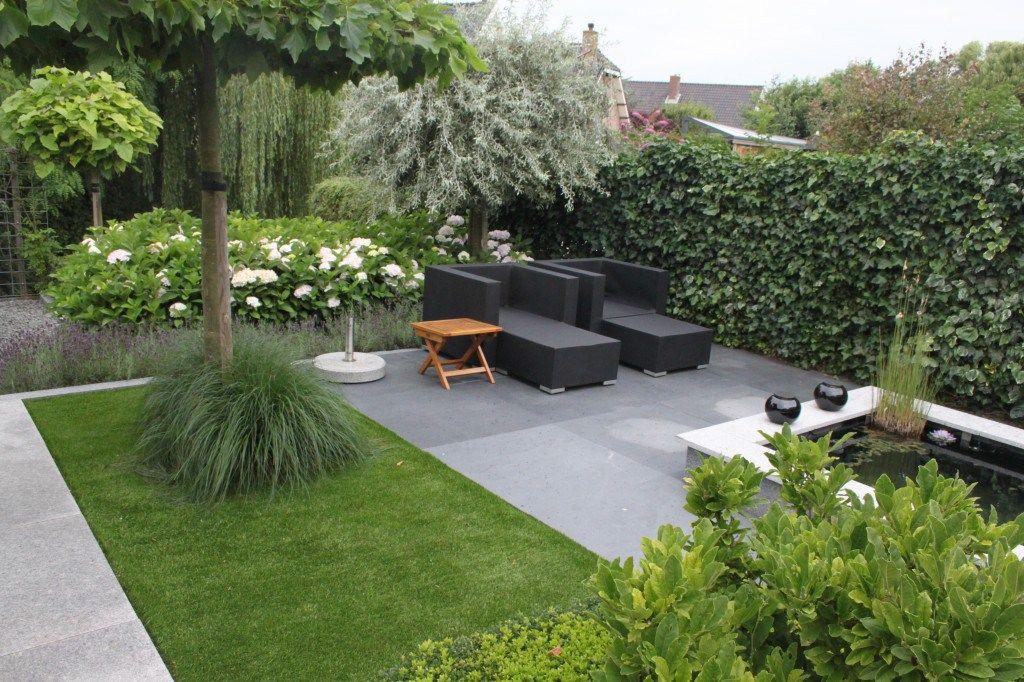Siegrassen geven in het najaar een prachtige kleur aan uw for Tuin inspiratie modern