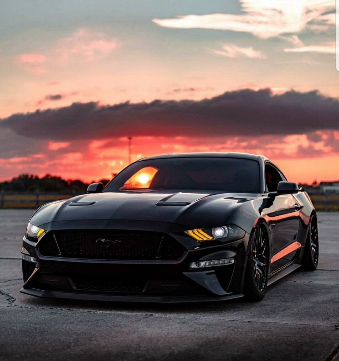 American muscle cars mustang image by ray wilkins on