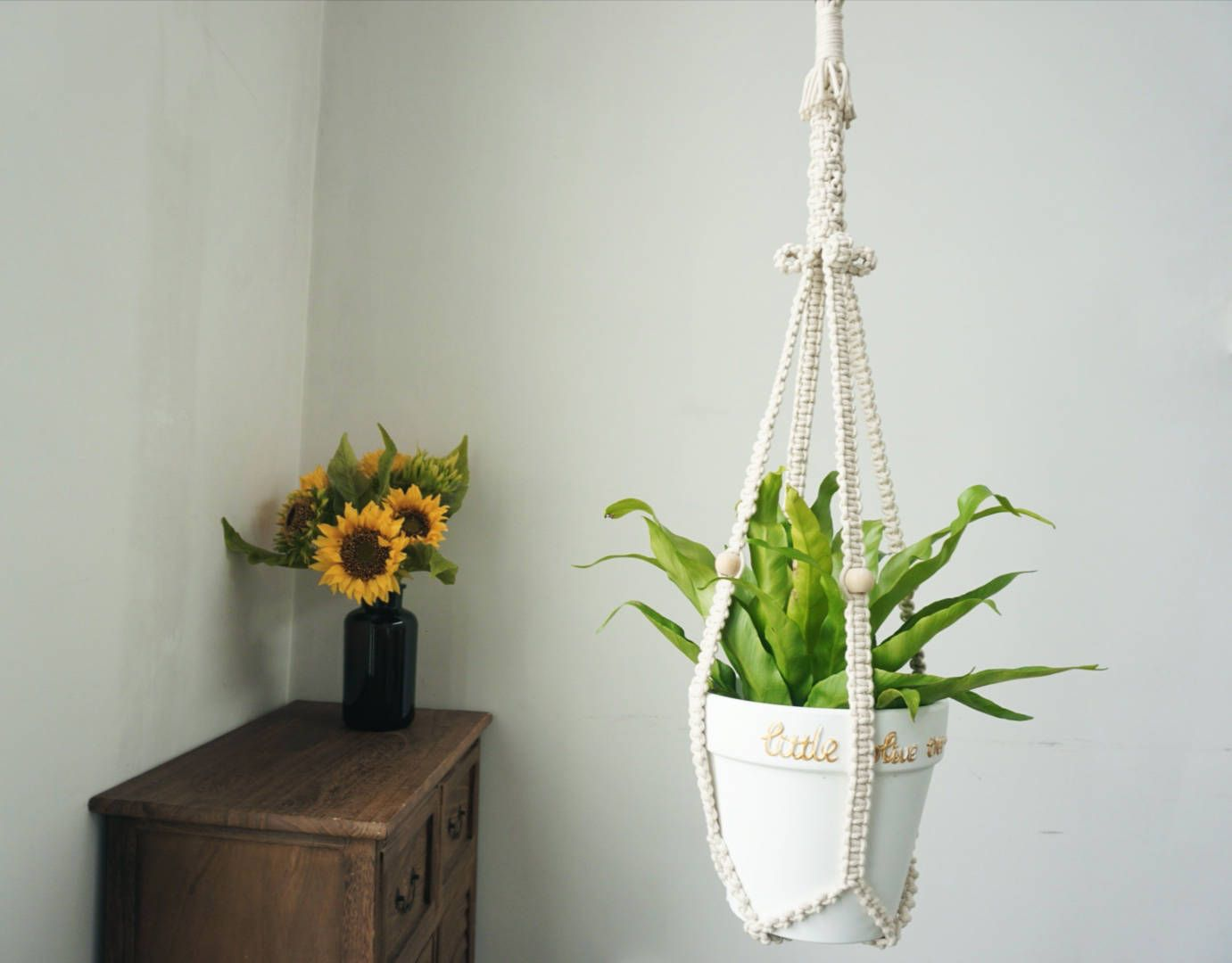 how to make a macrame plant hanger without tassel