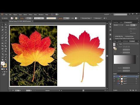 Convertir Imagen En Vector En Adobe Ilustrator Illustrator Tutoriales Ilustraciones Disenos De Unas